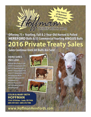 HoffmanHerefords_2016SaleCatalogCover